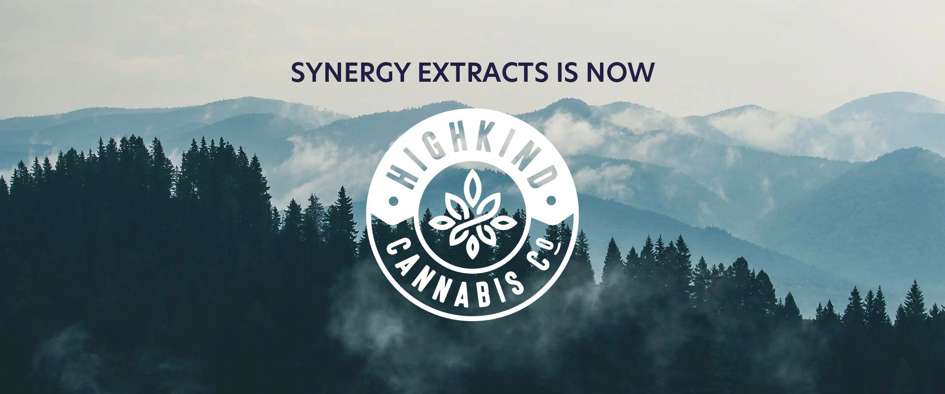 highkind-banner-home